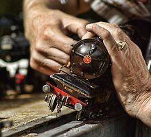 The hands of a hobbyist by Guy Carpenter
