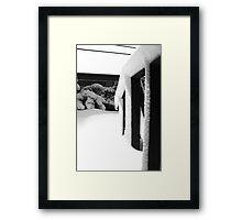 Railing Framed Print
