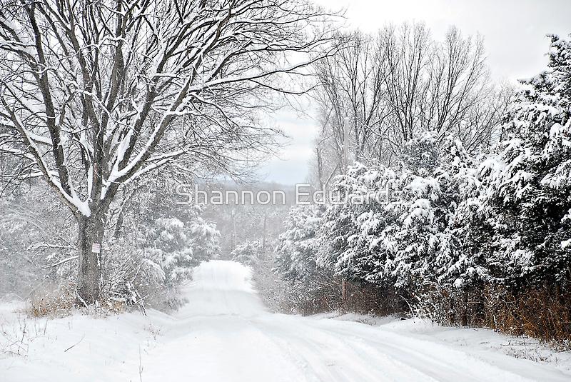 Winter Grace by Shannon Edwards