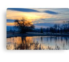 Old Willow at Sunrise Canvas Print