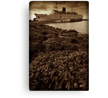 Old Rusty Liner Canvas Print