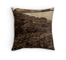 Old Rusty Liner Throw Pillow