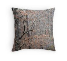 Inspiration Unleashed Throw Pillow