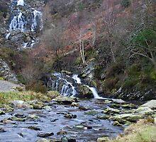 Waterfalls near Lake Vyrnwy No1 by StephenRB