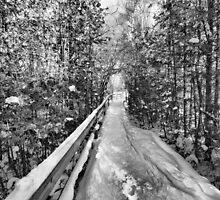 Pathway by GailDouglas