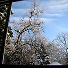 Window to Winter by fairielights