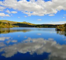 Burrator reservoir  by Chriskeates
