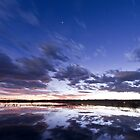 Sunset and Star Light at the Bosque by TheBlindHog