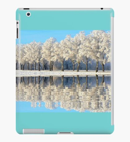 NATURES WINTER MIRROR iPad Case/Skin