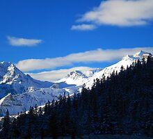 Suisse Alps, Wengen by Tomasz Tworek