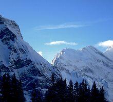 Suisse Alps, Wengen II by Tomasz Tworek