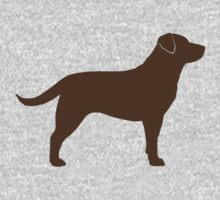 Chocolate Labrador Retriever by Jenn Inashvili
