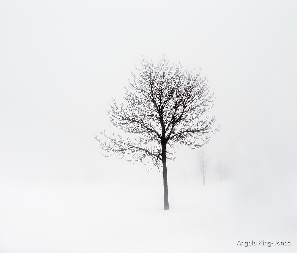 Minimum visibility by Angela King-Jones