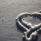 Snow by Kaitlyn McLaughlin