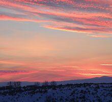 Purple Mountains Majesty by BettyEDuncan