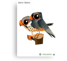 Amur Falcon Canvas Print