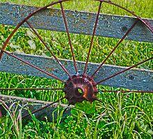 The Wheel by Renee D. Miranda