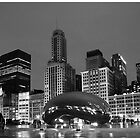 Chicago Park  in Black and White by Patrick  Warneka