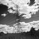 Great Power- b&amp;w version by jmarie