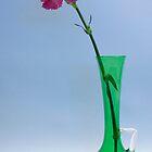 Floral simplicity by Martyn Franklin