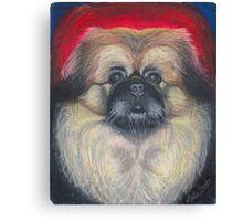 Fozy Bear, the Peke Canvas Print
