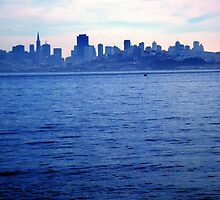 panoramic view of skyline,san francisco by califpoppy1621