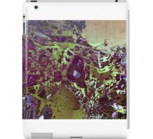 Abstract Fractal render iPad Case/Skin