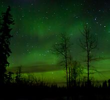 Feb 6th/11 Northern Lights by peaceofthenorth