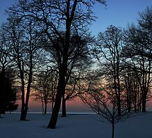 The beach at dusk by cherylc1