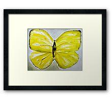 Yellow Buttercup Butterfly Framed Print