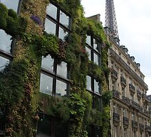 Paris jungle by CranBerryOcean