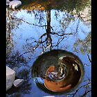 Whirlpool reflections. by gnarlyart