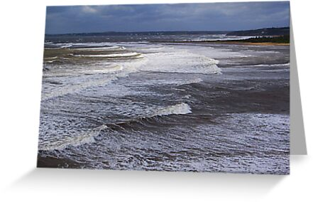 Surf On a Sandy Shore by Jann Ashworth