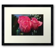 Pink roses with added textures Framed Print