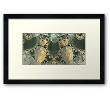 the guardians of Lothorien Framed Print