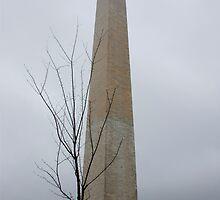 Monumental Mist by Chuck Zacharias