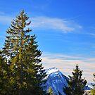 Rigi Views by Luke Griffin