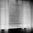 Blinds on a Window by Photo-Bob