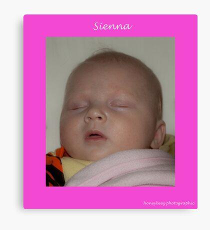 Sienna sleeping Canvas Print