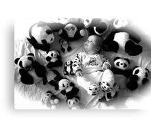 Panda baby Canvas Print