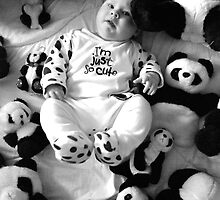 Panda baby 2 by aginia
