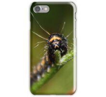 Cinnabar Moth Caterpillar iPhone Case/Skin