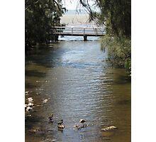 Duck Creek, Bridge & Lake Illawarra Photographic Print