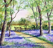 Bluebell path by Ann Mortimer