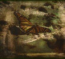 Butterfly by DottieDees