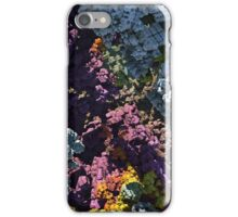 Fractalicious - Graphics iPhone Case/Skin