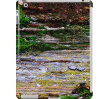 Natural Rock Wall iPad Case/Skin