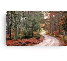 A curvy country-road Canvas Print