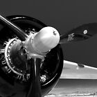 B-25 propeller by bkaldorf
