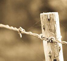 No bird on a wire by Gustav Snyman
